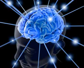 unified field of consciousness hologram brain physics and meditation