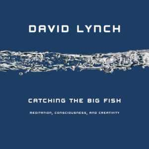 catching-the-big-fish- david lync - review