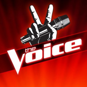 lee chesnut interview the voice republic records