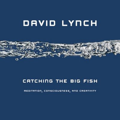 meditation books spirituality catching-the-big-fish- david lync - review