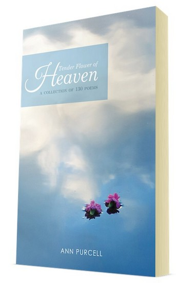 tender flower heaven ann purcell book review