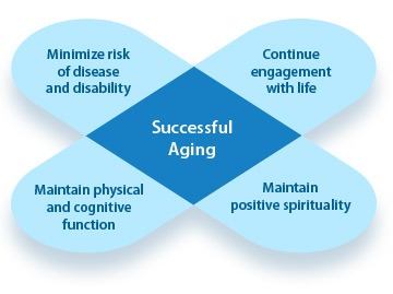 Successful-Ageing-longer life meditation